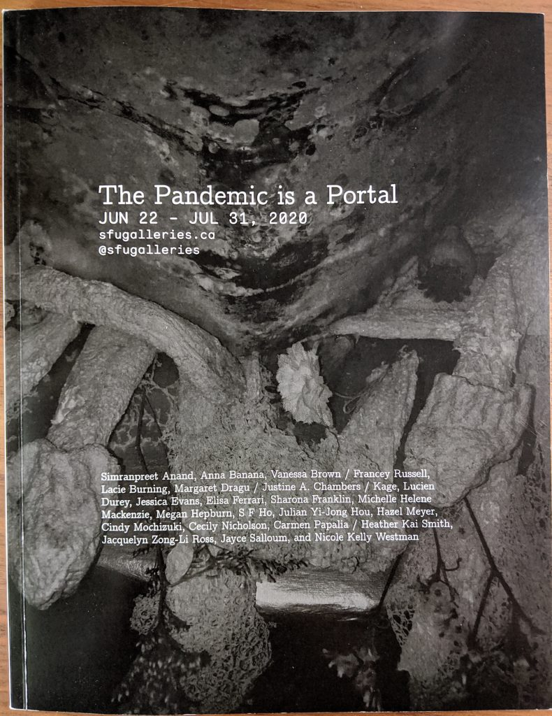 The Pandemic is a Portal